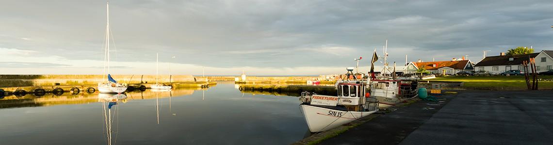 En levande Södra Hamn i Brantevik med möjlighet att bedriva näringsverksamhet och ett aktivt fiske.