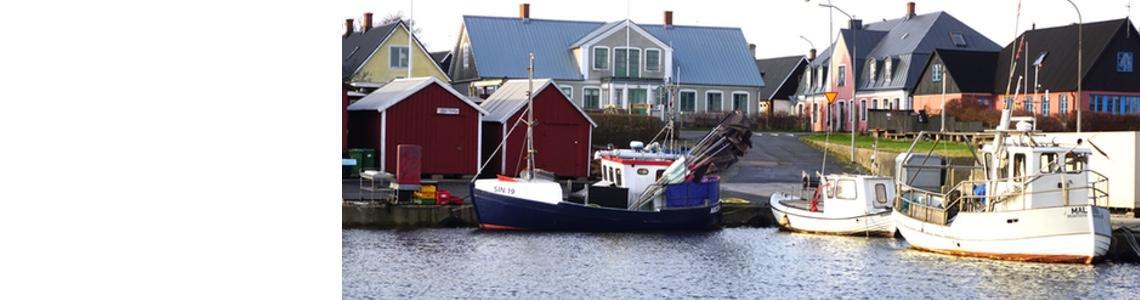 Upptäck Brantevik – Branteviksrundan 2019